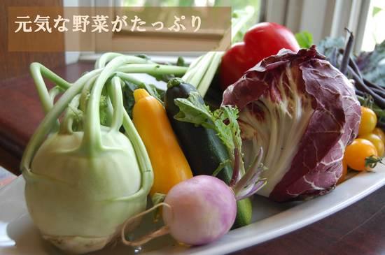 DSC_0013.JPG.jpg